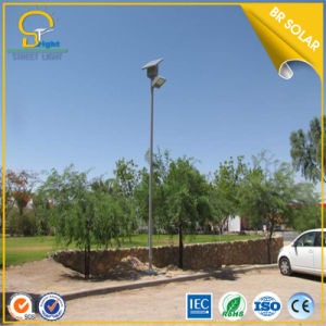Economical Type 8m 60W LED Light with Solar Panel pictures & photos