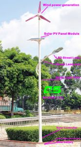 WPSRR-7703 3~15m Municipal Road Hot DIP Galvanized Steet Light Pole style pictures & photos