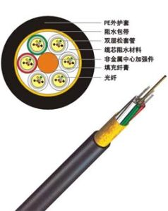 GYTA/GYTS/Gyfta/Gyfts/Gyty/GYFTY/GYXTW 48 Core Single Mode Fiber Optical Fiber pictures & photos