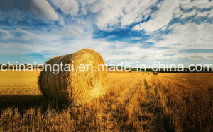 Agricultural Silage Twine PP Hay Baler Twine pictures & photos