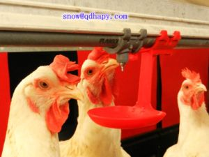 High Quality Poultry Equipment for Broiler Layer and Breeder pictures & photos