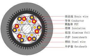 Instrumentation cables CU/XLPE/ISOS/PVC/SWA/PVC pictures & photos
