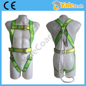 En361 Full Body Safety Harness with Lanyard Yl-S352 pictures & photos