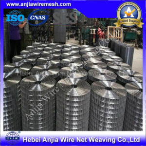 High Quality Hot-Dipped Galvanized Weld Wire Mesh with (CE and SGS) pictures & photos