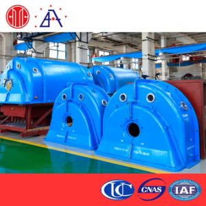 10kw Coal-Fired Steam Turbo Generator (BR0146) pictures & photos