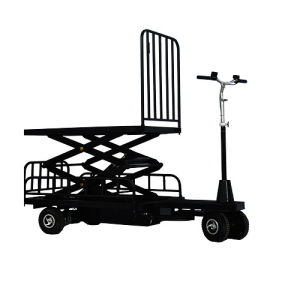 Electric Cargo Tricycle (DH-LS1-C5 Small Fence Curtis Controller 500W Motor)
