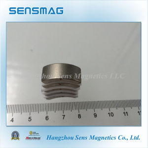 Professional Permanent NdFeB Arc Neodymium Magnet for Brushless, Generator, Motor pictures & photos