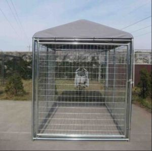 6ftx6FT Welded Wire Mesh Dog Run Kennel with Roof/Dog Cage pictures & photos