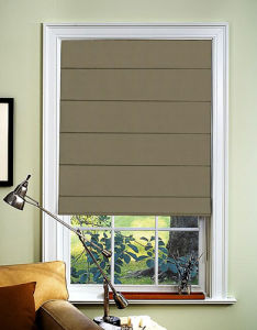 28mm/38mm Blinds Roller Blinds (SGD-R-3038) pictures & photos