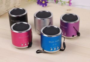 Cheap Gift Speaker FM Radio Mini Speaker Support TF Card & USB pictures & photos