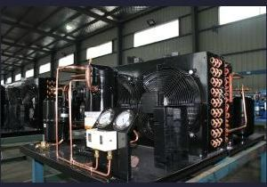 Tecumeh Compressor Unit with Good Quality and Best Price pictures & photos