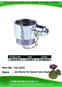 "BS336 Hydrant Valve: 2-1/2""NPT==2-1/2"" BS336 (John Morris) pictures & photos"