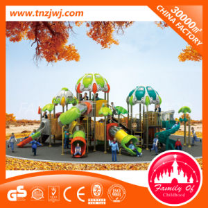 CE Certificated Commercial Gym Kids Outdoor Playground for Sale pictures & photos
