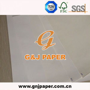 Good Price Fluting and Testliner Paper for Wholesale pictures & photos