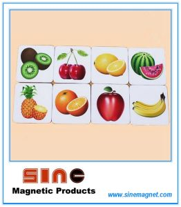 Children Early Education Fruit Fridge Magnet/Learn Toys pictures & photos
