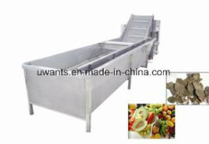 2017 New Designed Professional Vegetable and Fruits Washing Machine pictures & photos