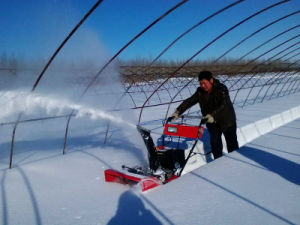 11HP Snow Thrower / Snow Blower / Snow Plow pictures & photos