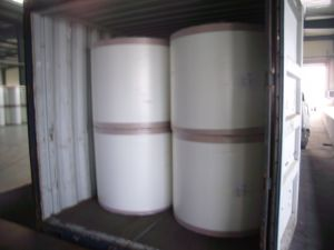 E Glass Fiberglass Roofing Tissue S-RM60g pictures & photos