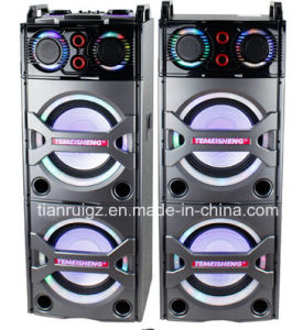 2X10inch Big Power 2.0 Professional Speaker with Bluetooth LED Light E246 pictures & photos