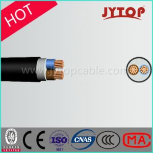 0.6/1kv 2 Core XLPE Insulation Copper Cable pictures & photos