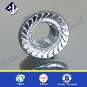 Hex Flange Nut with Blue Zinc Coating pictures & photos
