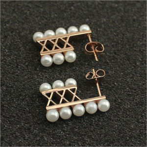 Stainless Steel Jewelry Earrings Fashion Jewelry Accessories (hdx1109) pictures & photos