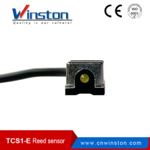 Position Reed Sensor Magnetic Switch with Ce pictures & photos