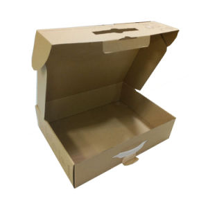 Printed Brown Kraft Paper Box with Plastic Handle pictures & photos