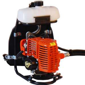High Quality Backpack Bg328 Brush Cutter pictures & photos