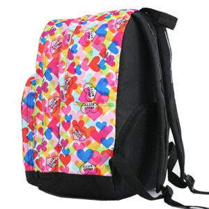 Lovely 2 Compartment Double Shoulder School Student Bag Backpack pictures & photos
