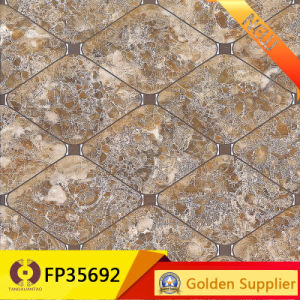 Building Material Digital Wall Tile Floor Tiles (FP36091) pictures & photos