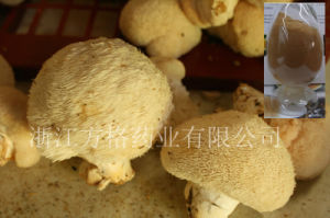 Radiation-Free Lion′s Mane Extract 20%-50%; Edible and Medicinal Mushroom; Health Care Supplement;