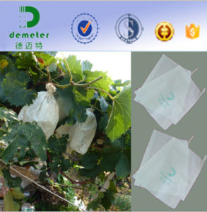 Sterility Non-Pollution Micro Pore Paper Bag Protect Grape During Growing to Increase Sugar Preserved in Fruits pictures & photos