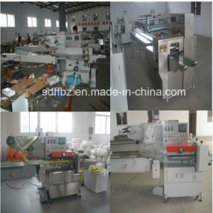 Full Servo Motor Control Biscuit on Edge Packing Machine (FFW) pictures & photos