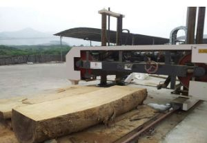 Large Diameter Horizontal Wood Band Saw pictures & photos