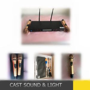 Professional UHF Wireless Microphone for Outdoor Performance pictures & photos