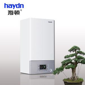 CE Wall Hung Gas Boiler