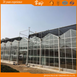 China Supplier Commercial Intelligent Multispan Glass Greenhouse pictures & photos