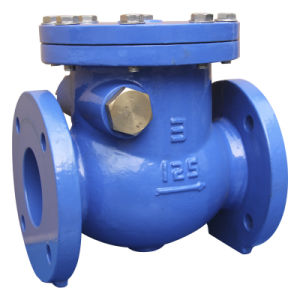 ANSI Class 125 Double Flange Swing Check Valve pictures & photos
