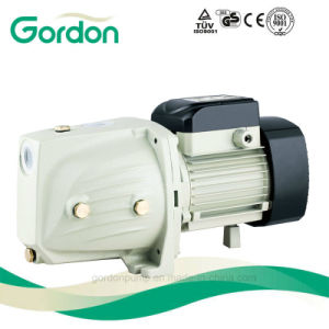 Gardon Electric Copper Wire Self-Priming Jet Pump with Pressure Switch pictures & photos