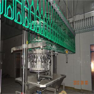 Chicken Processing Equipment pictures & photos