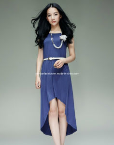 2014 Knitted Casual Dress (XYD-239)