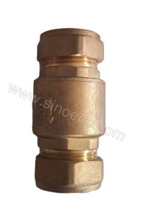 Brass Equal Female Spring Check Valve Strainer pictures & photos