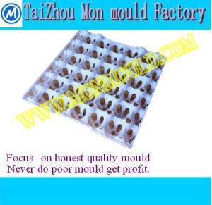 Plastic Injection Mould for Egg Tray, Egg Pallet, Egg Container, Egg Holder