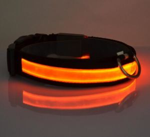 Hig Quality LED Fluorescent Dog Collars
