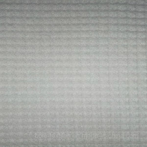 Waffle/Waffle Cloth/Knitted Fabric/Cotton Dobby pictures & photos