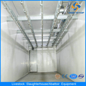 Cattle Abattoir Process Plant with SGS ISO Certificate pictures & photos