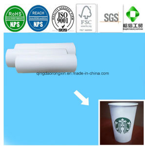 Single Side PE Coated Starbucks Hot Coffee Drinking Cup Paper pictures & photos