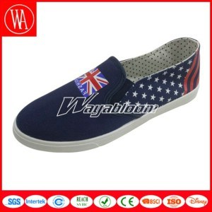 Flat Leisures Canvas Men Shoes Dressed in Dazzling pictures & photos