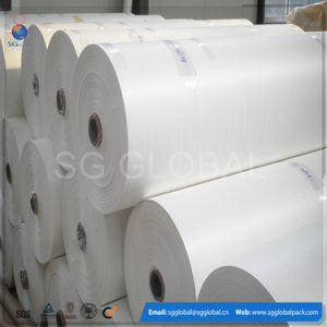 White PP Laminated Woven Fabric pictures & photos